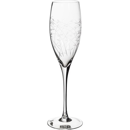 Picture of NESS champagne glass h25cm clear