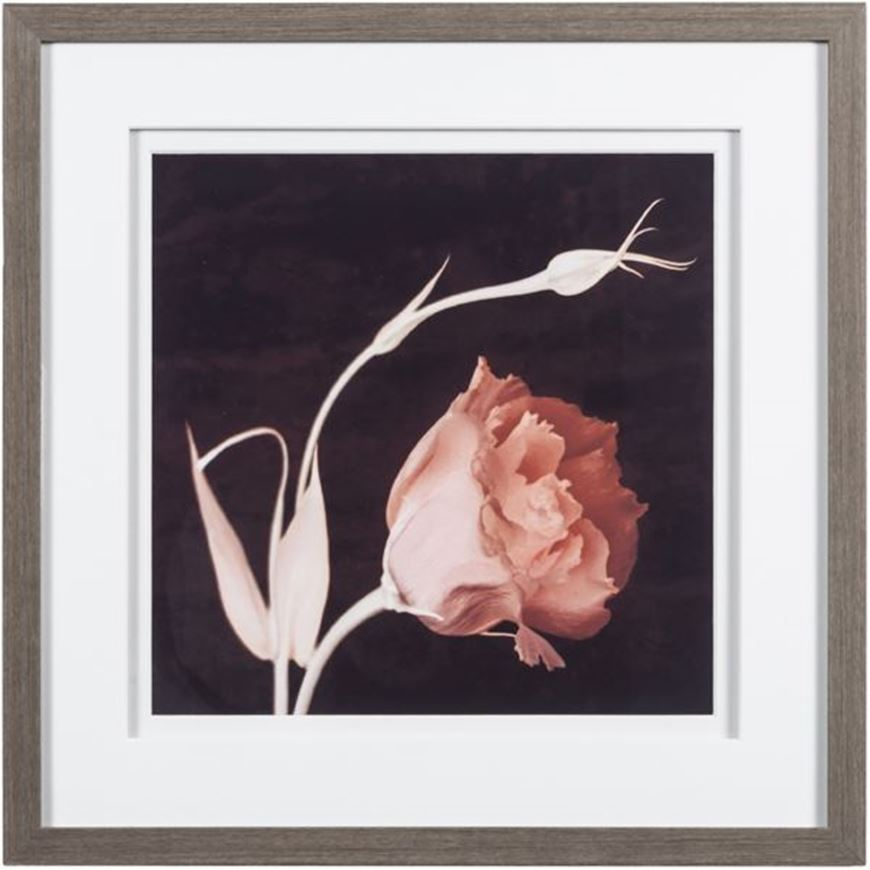 Picture of Framed Print Intention 45x45 grey