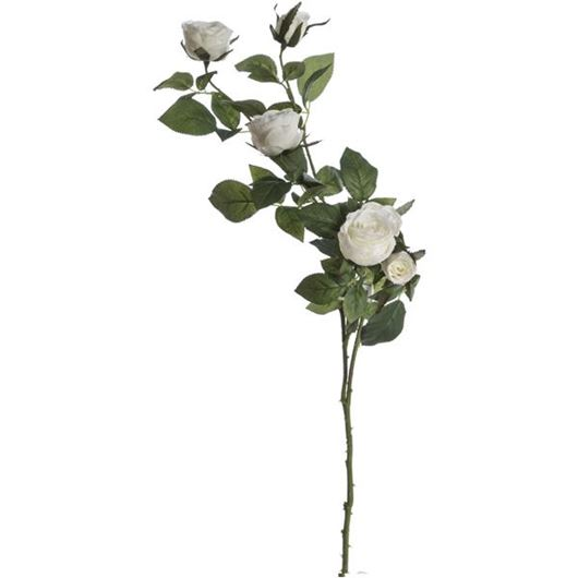 Picture of GARDEN rose stem h68cm white
